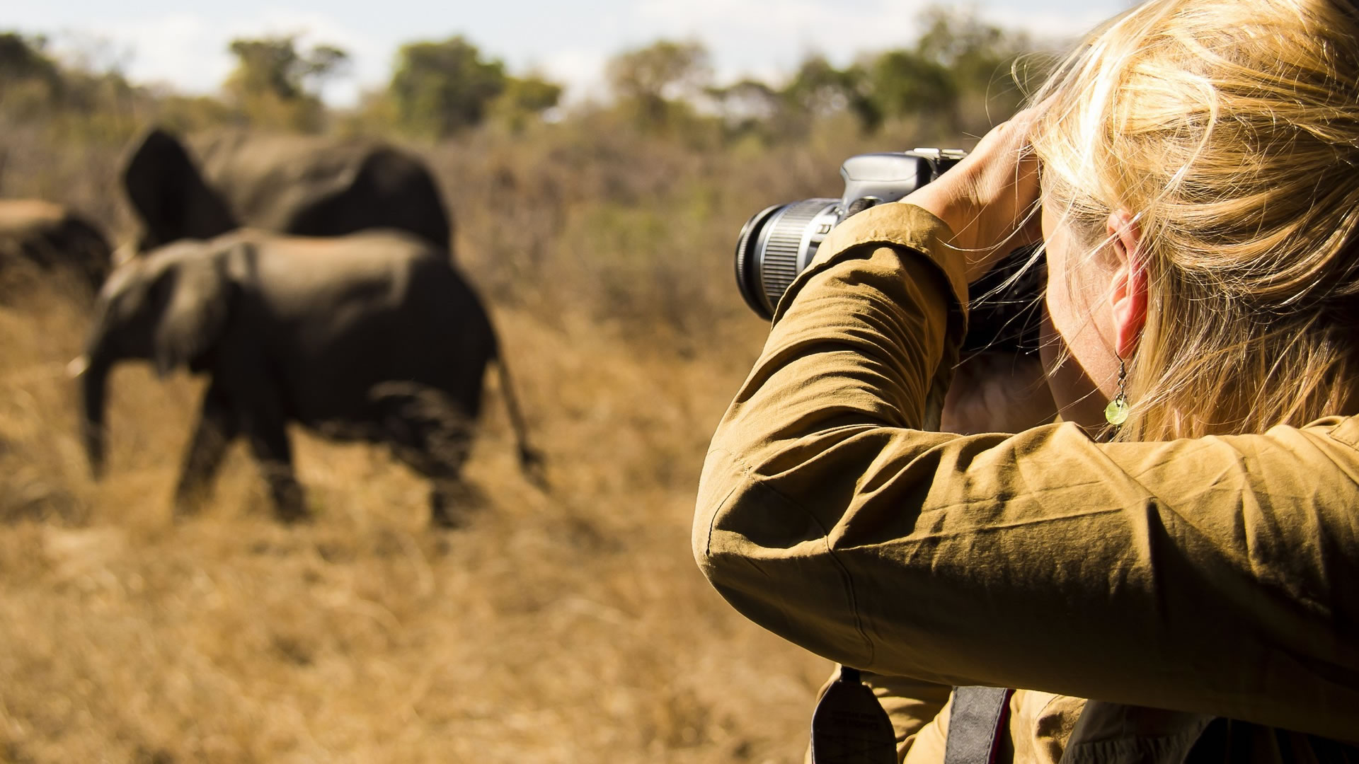 12 days photographic safari